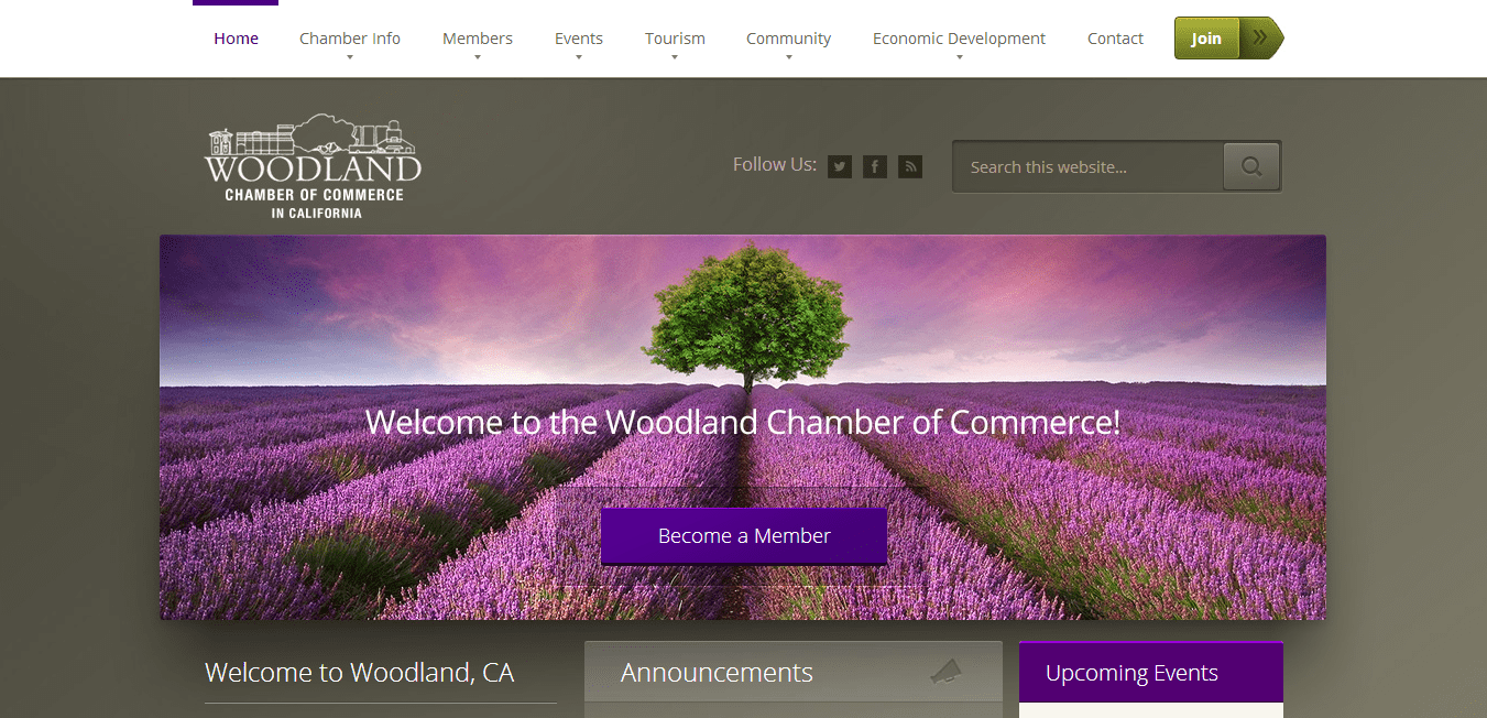 Website design woodland ca for Best home remodeling websites